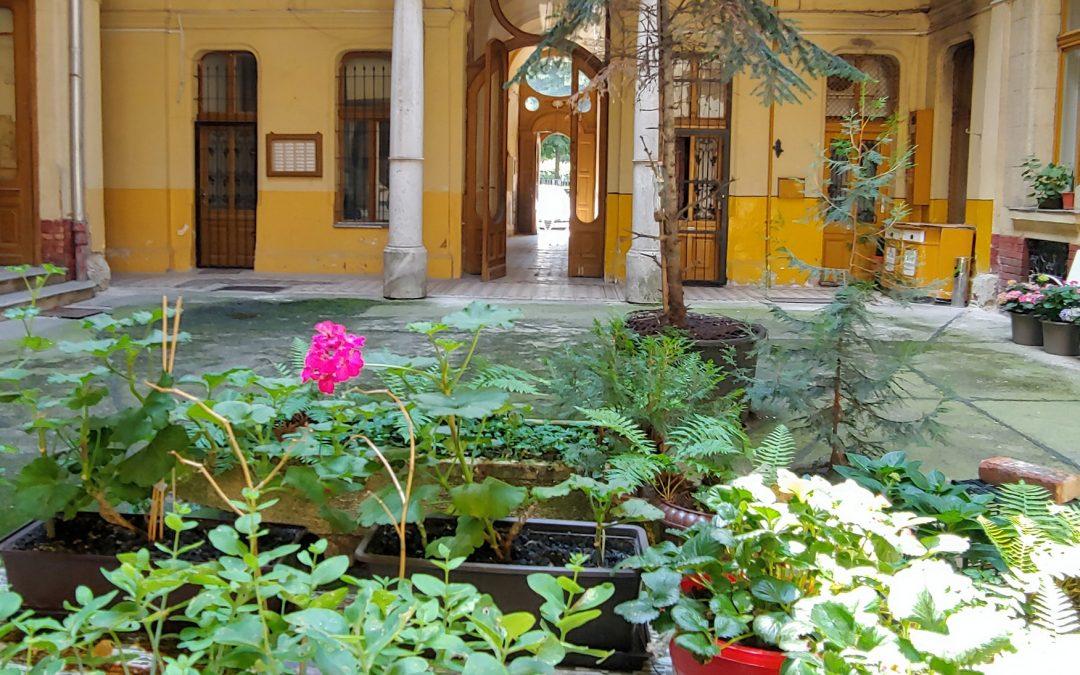 """A Klauzál tér 9 udvarán csupán annyi jutott eszünkbe, hogy """"aki a virágot szereti……"""