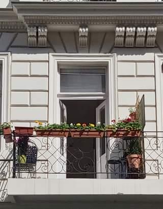 Kezdődik a vidám-színes erkélyek és gangok időszaka Budapesten… itt a tavasz!S