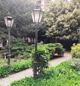 Májusi nagyon zöld udvar a Dob utcában.